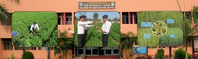 Colleges Of Agriculture Agriculture Dr Balasaheb Sawant Konkan Krishi Vidyapeeth Dapoli