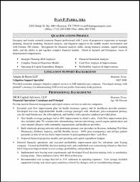 corporate finance professional resume it resume sample sample resumes for experienced it professionals executive resume formats for business development and
