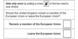 Image result for 2016 UK  EU referendum