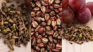 Obat Presbiopi Herbal