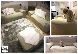 animal friendly furniture. Large Size Of Friendly Sofa Cat Proof Waterproof Pet Furniture Covers Animal  Fabric Dog C . Awesome