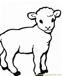 Small Picture Sheep Coloring Page 0001 12 Coloring Page Free Sheep Coloring