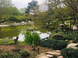 photo of japanese garden houston tx united states japanese garden at hermann