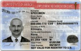 lost or stolen social security card
