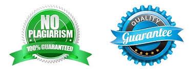 custom essay service essay zone custom writing service