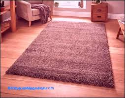 animal shaped rugs inspirational 61 best small bedroom carpet new york spaces pics of animal