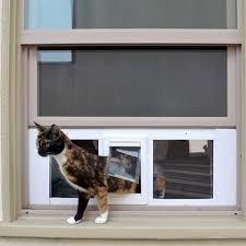 ideal fast sash window pet door cat doors within for plan 0
