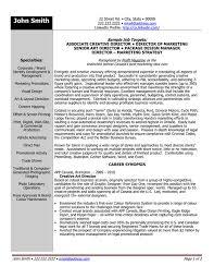 Executive Creative Resume Templates