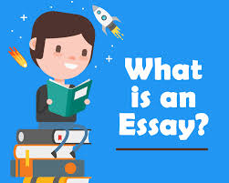 what is an essay blog what is an essay