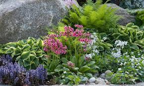 hardiness 5 inspiring garden ideas