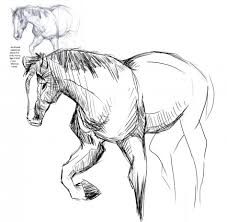 Small Picture Coloring Pages Printable Horseland Coloring Pages For Kids
