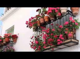small garden ideas pt 2 top tips for