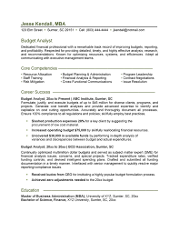 Budget Analyst Resume - Outathyme.com