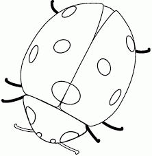 Small Picture Lady Bug Coloring Page pertaining to Your home Cool Coloring