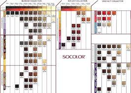 Shades Eq Toner Chart 11 Luxury Java Color Chart Pictures Percorsi Emotivi Com