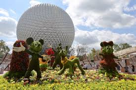 26th epcot international flower garden festival blooms for 90 days at walt disney world resort florida national news