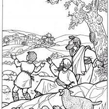 Kleurplaat Herders 3 11 Jaar Bijbels Opvoedennl