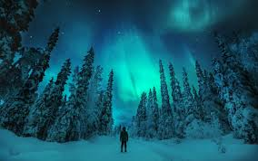 North Light The Way On The Hunt For The Northern Lights Visitfinland Com
