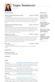 Qa Engineer Resume Sample Qa Resume Sample Software Test Manager