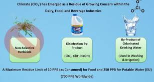 Food Company Product Tree Diagram Chlorate Is An Emerging Residue Of Concern Within The Dairy