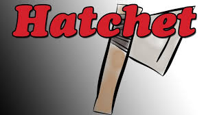 hatchet by gary paulsen book summary and review minute book report you