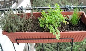 outside herb garden by tablet desktop original size back to nice outdoor herb garden planters
