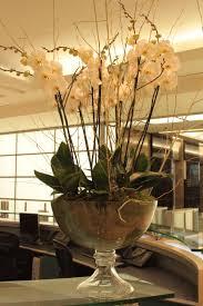 office floral arrangements. White Orchids For This Corporate Office Floral Arrangement #contractflowers #orchid #whiteorchids #office #flowers Arrangements M