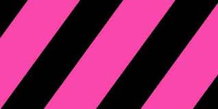 Flg Spgbk Pink Glo Black Striped Flagging Pacforest