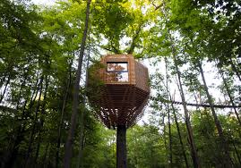 treehouse masters. Geometric Treehouse Inspired By \u201cBird\u0027s Nest\u201d Brings You Closer To Nature Masters