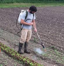 pin on to start my farm