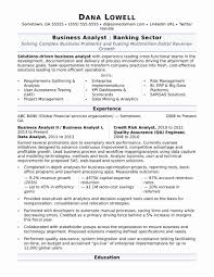 Business Analyst Resume Summary New Accounts Receivable Resume