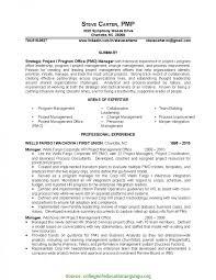 Sample Project Management Resume Newest Sample Resume For Pmo Role 24 Project Management Resume 23