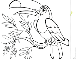 Printable Bird Coloring Pages For Adults Tropical Birds Cardinal