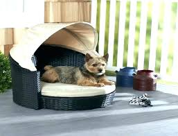 Outdoor Dog Bed With Canopy Canopies And Awnings High Resolution ...