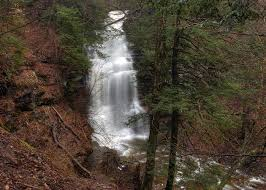 Ganoga Falls Roars in Early Spring Photograph by Gene Walls