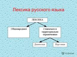 Презентация на тему Лексика русского языка Определение  1 Лексика русского языка