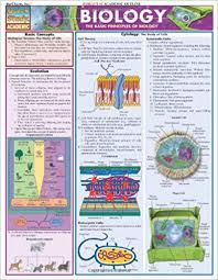 Biology Quickstudy Reference Guides Academic Inc