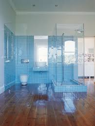 Spacious Showering Area with Blue Bathroom Ideas with Tile also Glass Door  Design