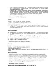 Techno Functional Consultant Sample Resume Flight Operations