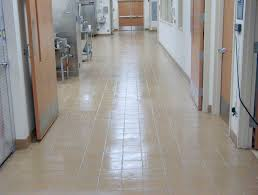Kitchen Floor Grout Cleaner Best Commercial Kitchen Tile Ideas All Home Designs