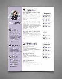 best cv template best resume templates pointrobertsvacationrentals com