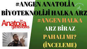 HEDEF Hedef Holding Halka arz (İNCELEME) TÜMDEN - YouTube