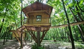 tree house designs. Tree House Designs L