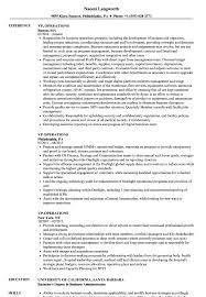 prezi resume examples - vp operations resume samples velvet jobs