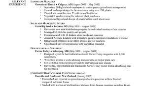 Free Simple Resume Resume Free Simple Resume Templates Amazing Good Resume A Good 69