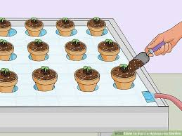 hydroponic gardening. image titled build a hydroponic garden step 15 gardening