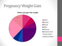 Weight Chart In Pregnancy Week By Week 24 Baby Weight Charts Template Lab