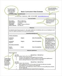 basic curriculum vitae template 12 formal curriculum vitae free sample example format download