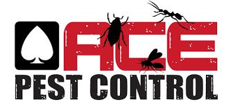 pest control amarillo tx. Beautiful Pest Pest Control And Bed Bug Extermination  Panhandle Amarillo TX Ace  For Amarillo Tx H