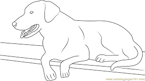 Small Picture Best Dog Black Labrador Coloring Page Free Dog Coloring Pages